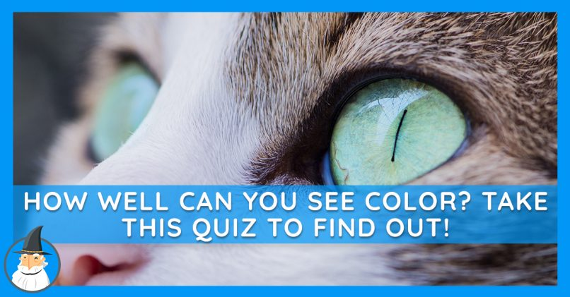 Only People With Perfect Color Vision Can Get Through Our Quiz