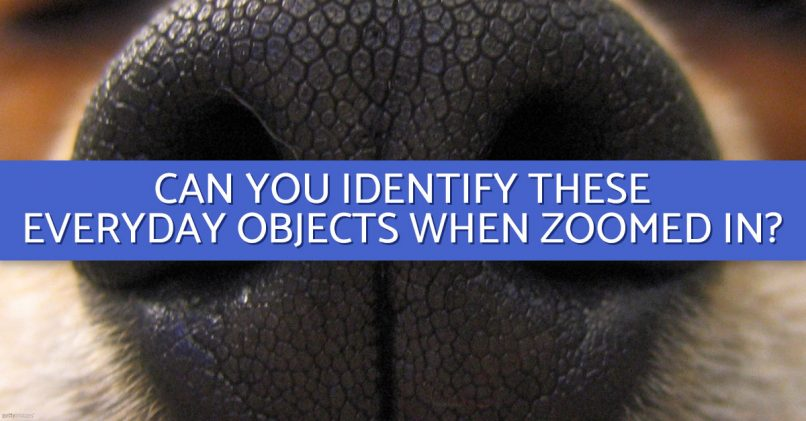 Do You Think You Can Identify These Objects Close-Up | MagiQuiz